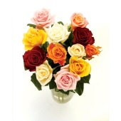 12 Mixed Rose Bouquet | Isle of Man