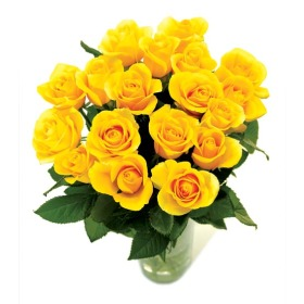 Send yellow roses buy yellow roses by post a rose meaning of 18 yellow roses mightylinksfo