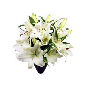 Deluxe White Lily Bouquet