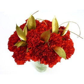 Festive Red Carnations