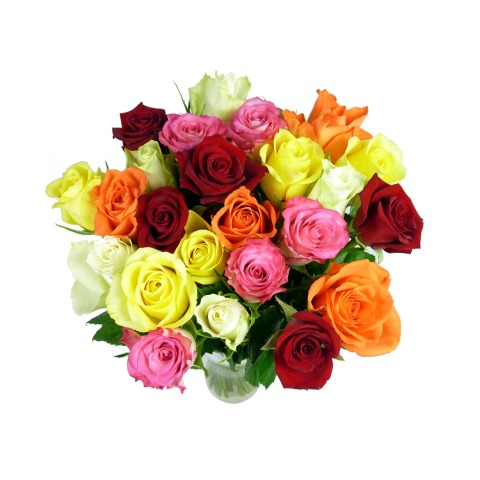 Image of 24 Classic Mixed Roses