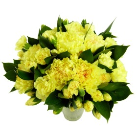 50% Extra Yellow Carnations