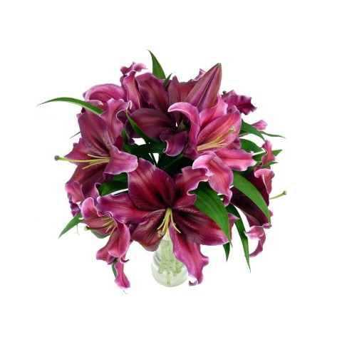Pink Lily Bouquet | FREE UK Delivery | Post-a-Rose Flowers ...