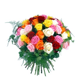 Prestige Fifty Assorted Roses