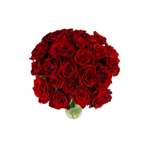 Image of 24 Select Red Roses
