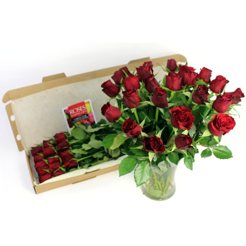 Valentine Sweetheart Roses
