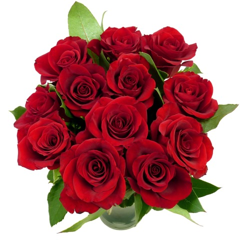 valentines 12 red roses | free delivery | post-a-rose | valentines, Ideas