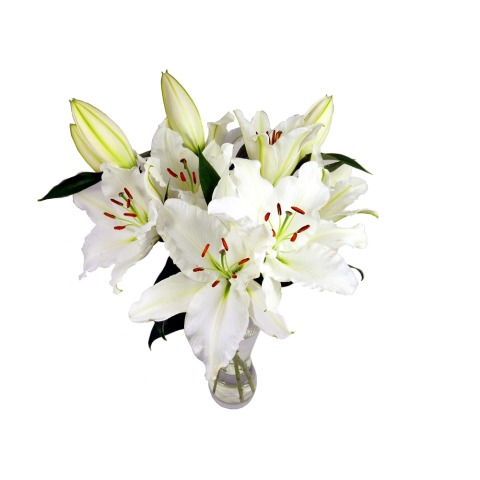 white lily bouquet free uk delivery post a rose flowers send