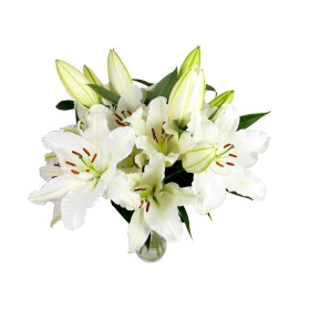 Large White Lily Bouquet