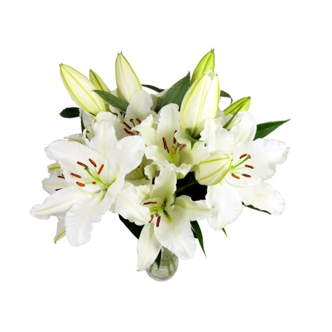 Large White Lily Bouquet Free Uk Delivery Post A Rose Flowers