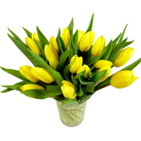 Easter tulips free uk delivery post a rose flowers easter flowers easter tulips easter tulips mightylinksfo