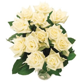 Send white roses buy white roses by post a rose meaning of white 18 white roses mightylinksfo