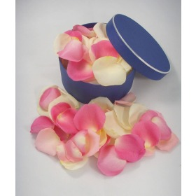 Fresh Pink & Cream Rose Petals